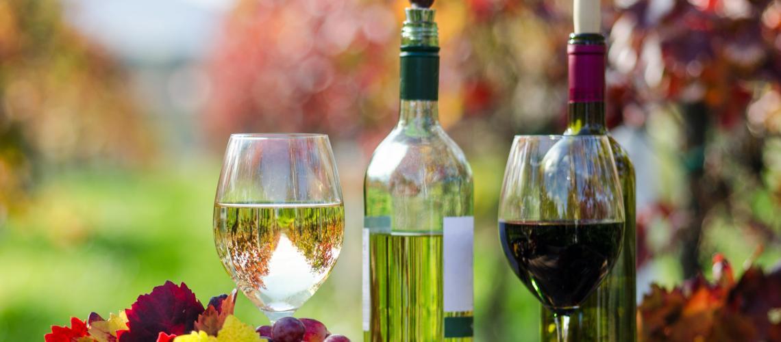 Découvrez notre carte des vins