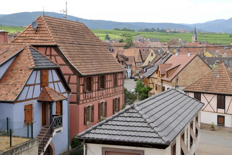 Séjours oenotouristiques en Alsace - Domaine
