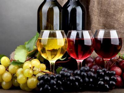 Visites et dégustations en Bourgogne